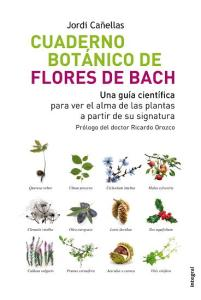 21_flores_bach (PETITA)
