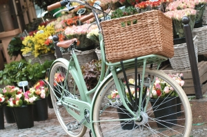 Dutch-bike