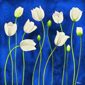 trajetas tulipanes