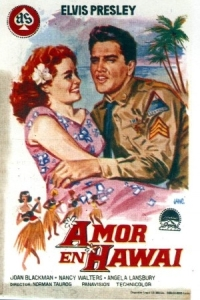 cartel_amor_en_hawaii_0