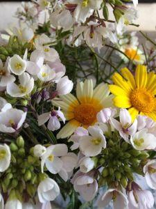 flores carmela 2