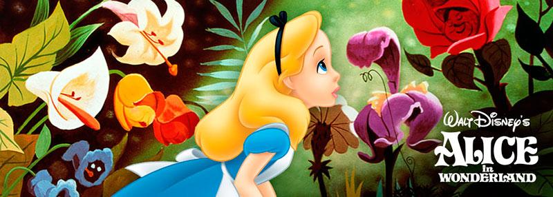 Las Flores Y El Mundo Animado Creciendoentreflores