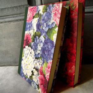 album flores bonito 2