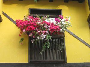 balcón paquí bellísimo