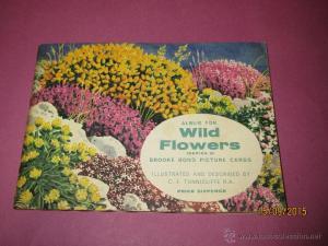 álbum flores