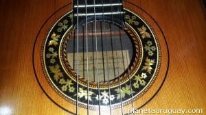 guitarra flores 4
