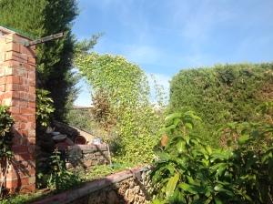 jardín felipe 2