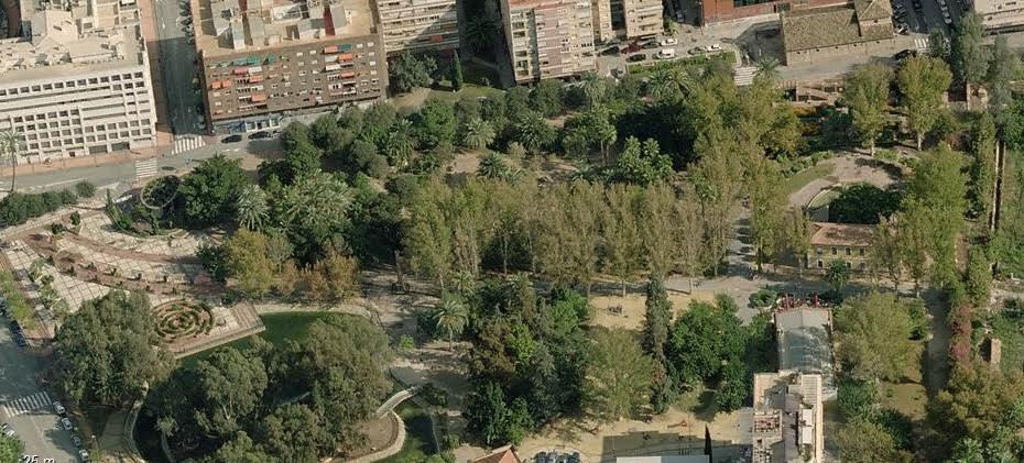 Ormosia cinnea o huayruro creciendoentreflores for Jardin de la polvora murcia