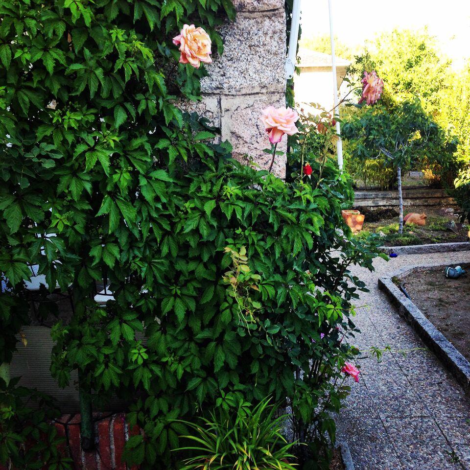 Jardines Con Encanto I El Jard N De Jimena