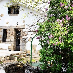 jimena jardín 12