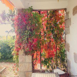jimena jardín parra Otoño