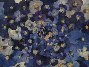mijoart flores