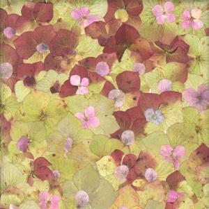 mijoart hortensias