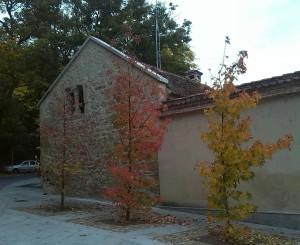 Alameda del Parral 25 oct 2015 (22)