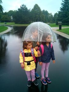ana wisconsin paraguas
