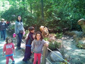 ana wisconsin zoo 4