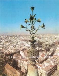 azucenas del Giraldillo de la Giralda de Sevilla