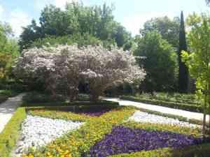 Botánico Madrid 2