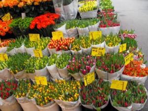 calle flores Alemania