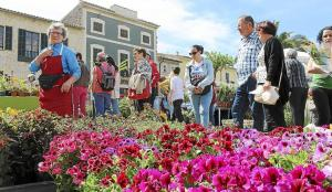 calle flores Costix Mallorca