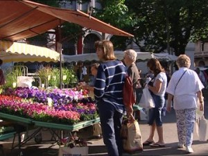 calle flores Zurich