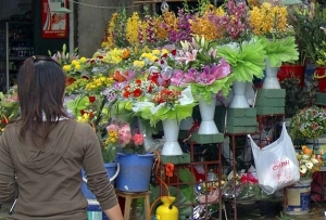 calle florres Hanoi
