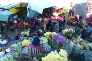 flores calle guatemala