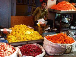 flores calle mercado mysore india