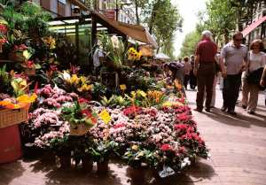 flores calle ramblas