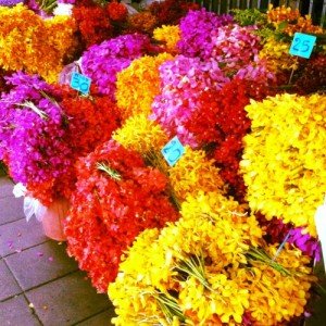 flores calle tailandia