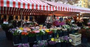 flores en la calle niza