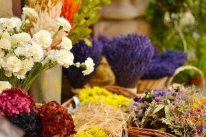 flores precioso
