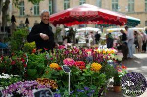 marché-des-fleurs2