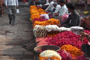 mercado-de-las-flores-choti-chopper_8187131