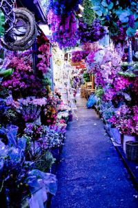 mercado flores bankok