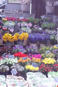 mercado flores holanda