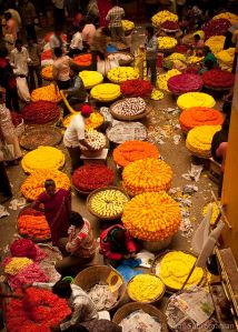 mercado flores marigold india