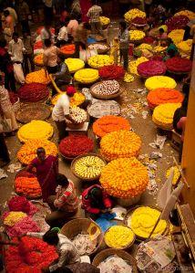 mercado flores marigold india