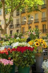 mercado flores provenza