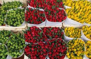 mercados-de-flores