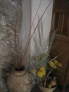Plantas secas