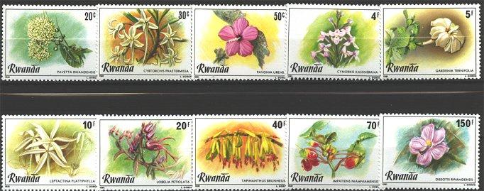 sellos 31