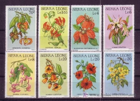 sellos 9