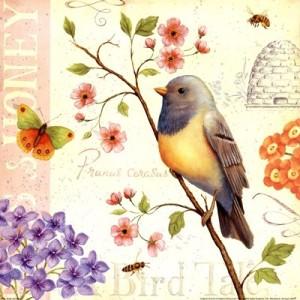 tarjeta vintage ave 6