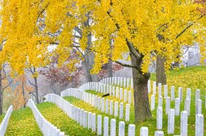 washington-dc-arlington-cemetery-virginia-usa