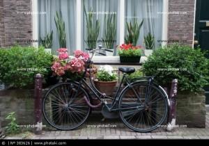 bicicleta-ventana-y-flores-en-amsterdam_383626