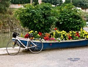 bicis flores