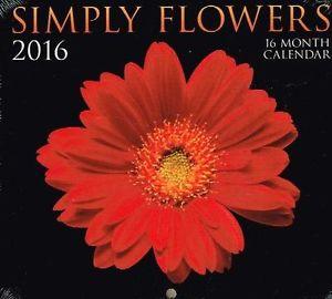 calendario 13 - copia