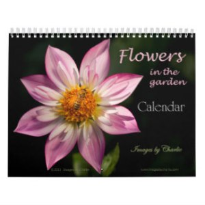 calendario 7 - copia