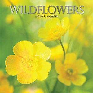 calendario14 - copia